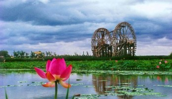 休闲湿地情游地 浪漫养心鸣翠湖