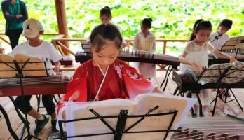 鸣翠湖的荷花节,不止可以赏美景,还有古筝场景教学...