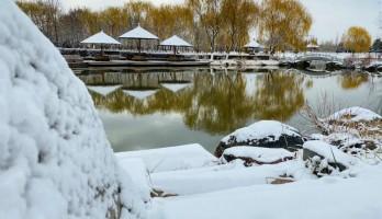 这是20年鸣翠湖遇见的,第一场雪。